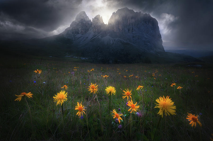 Landscape Photograph - The Majesty Of Sassolungo by Luca Rebustini