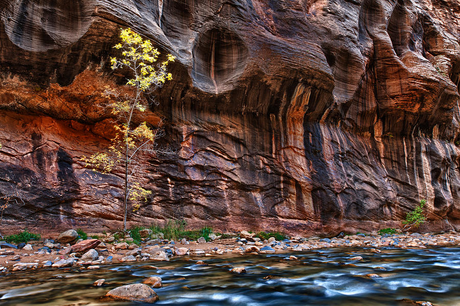 America Photograph - The Mall On The Narrows by Juan Carlos Diaz Parra