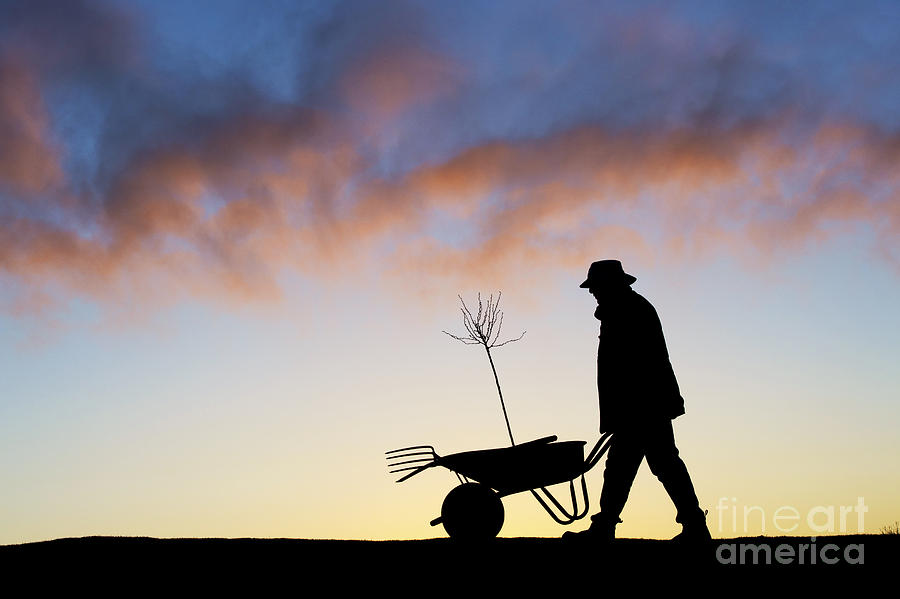 Man Photograph - The Man Who Plants Trees by Tim Gainey