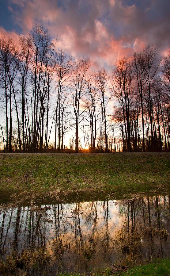 Marsh Photograph - The Marsh by Eti Reid