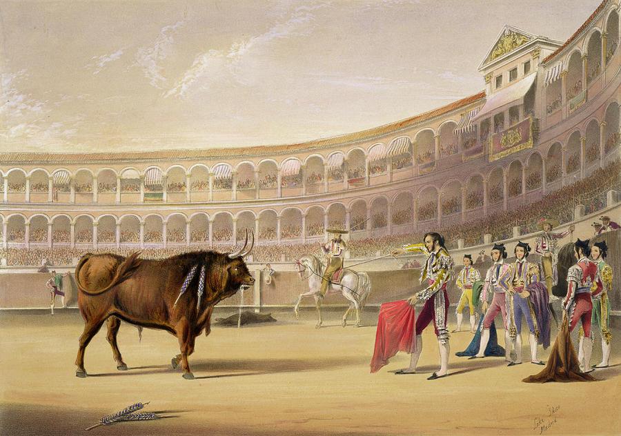 Plaza De Toros Drawing - The Matador by William Henry Lake Price
