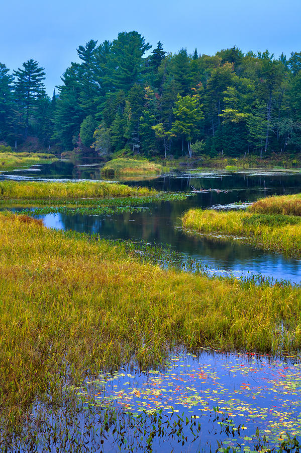 Adirondack's Photograph - The Meandering Moose River - Old Forge New York by David Patterson
