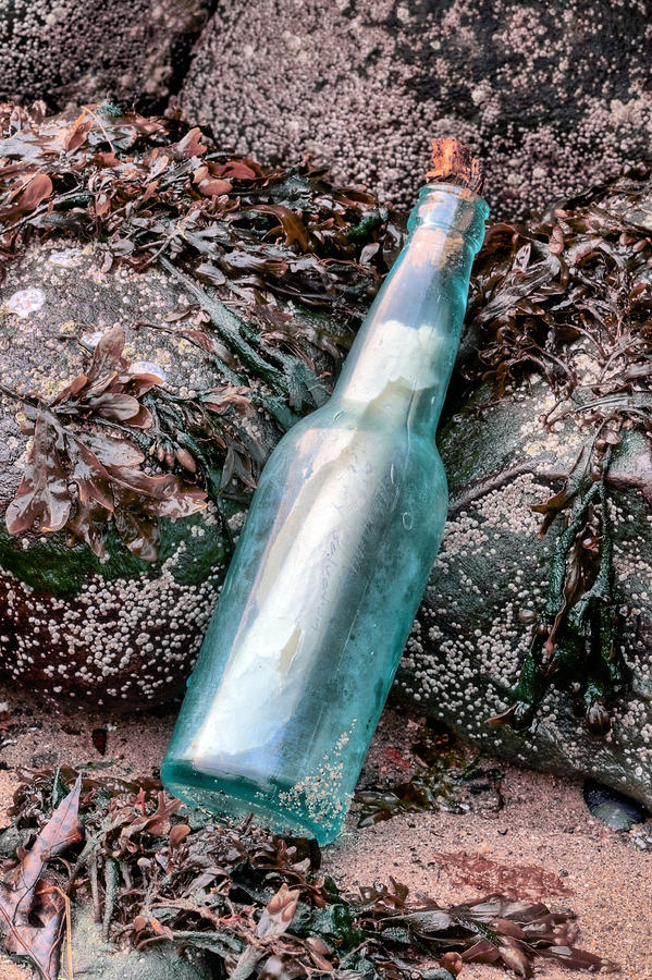 Message In A Bottle Photograph - The Message by JC Findley