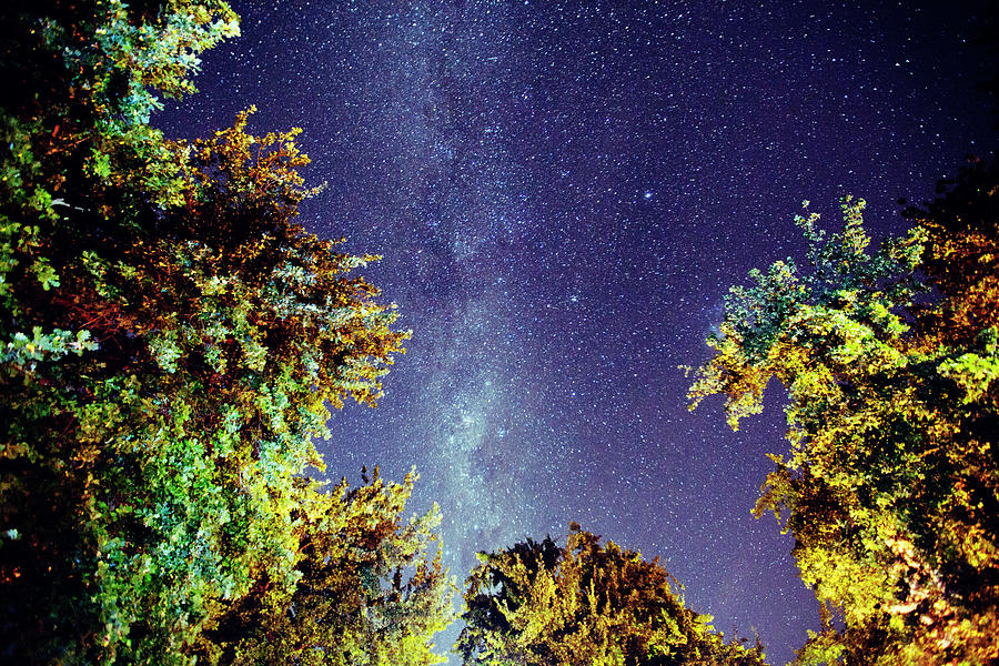 The Milky Way Photograph by Shaun