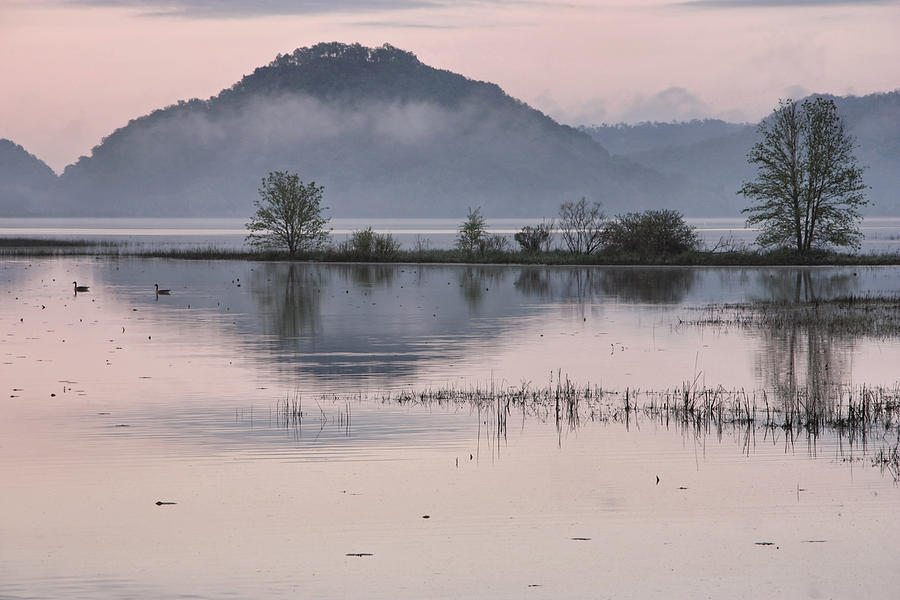 Water Photograph - The Misty Mississippi by Theo
