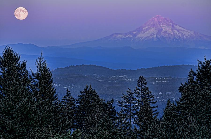 Mt. Hood Photograph - The Moon Beside Mt. Hood by Don Schwartz