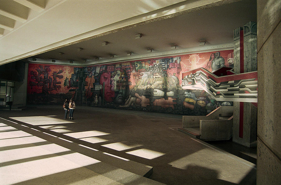 Mural Photograph - The Mural by Thomas D McManus