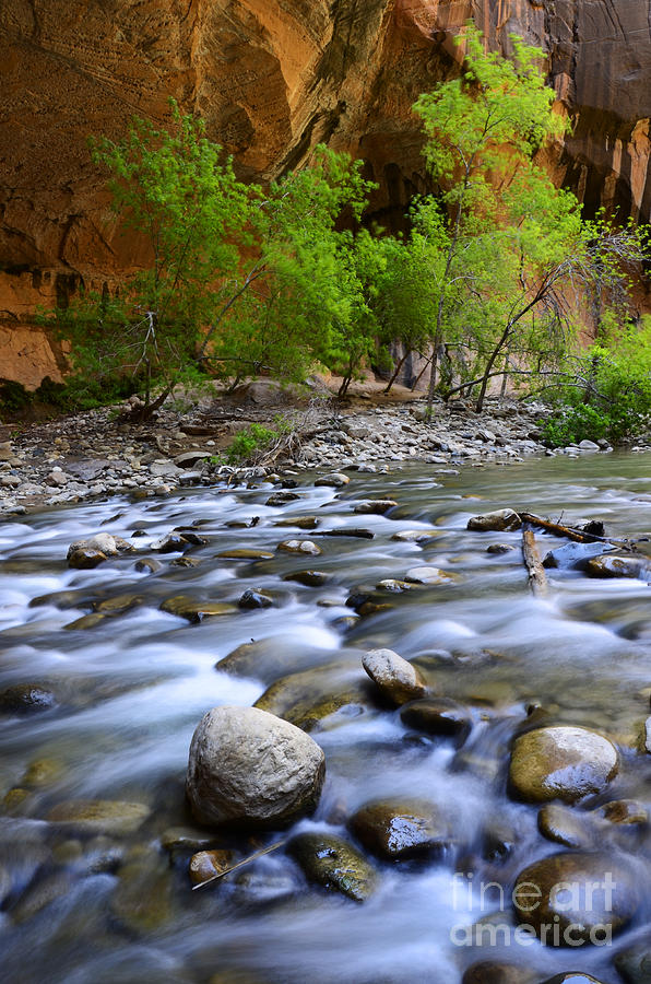 Virgin River Photograph - The Narrows A Place To Pause by Bob Christopher