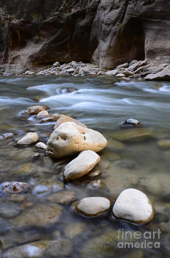 Virgin River Photograph - The Narrows One Step At A Time by Bob Christopher