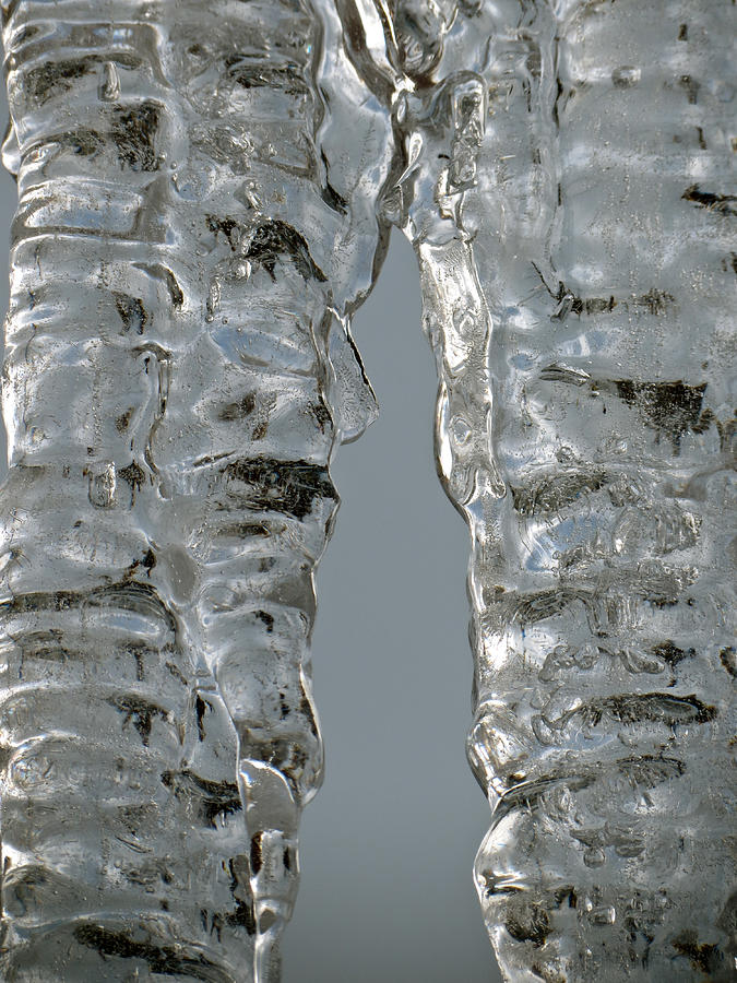 Ice Photograph - The Nature of Ice by Azthet Photography