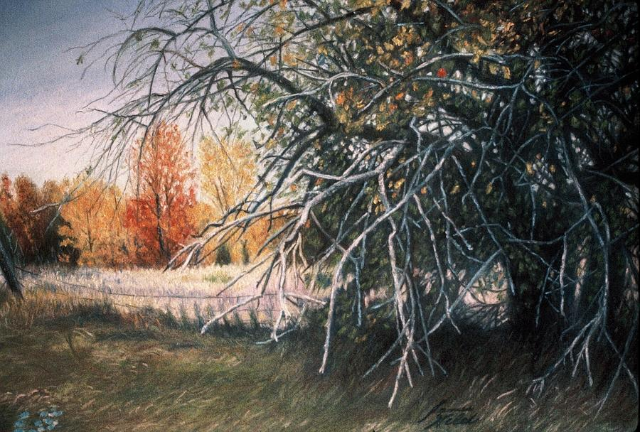 Landscape Pastel - The Old Apple Tree by James Welch