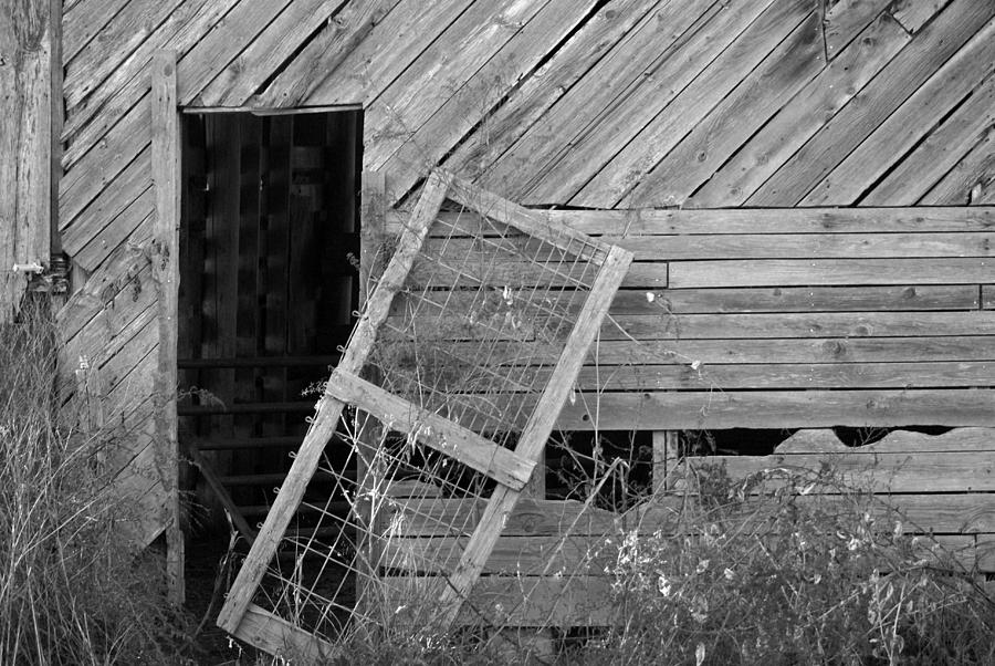 Old Photograph - The Old Barn by Mary Ely