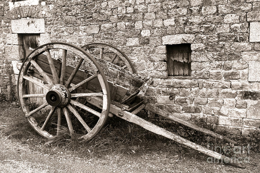 Wagon Photograph - The Old Cart by Olivier Le Queinec