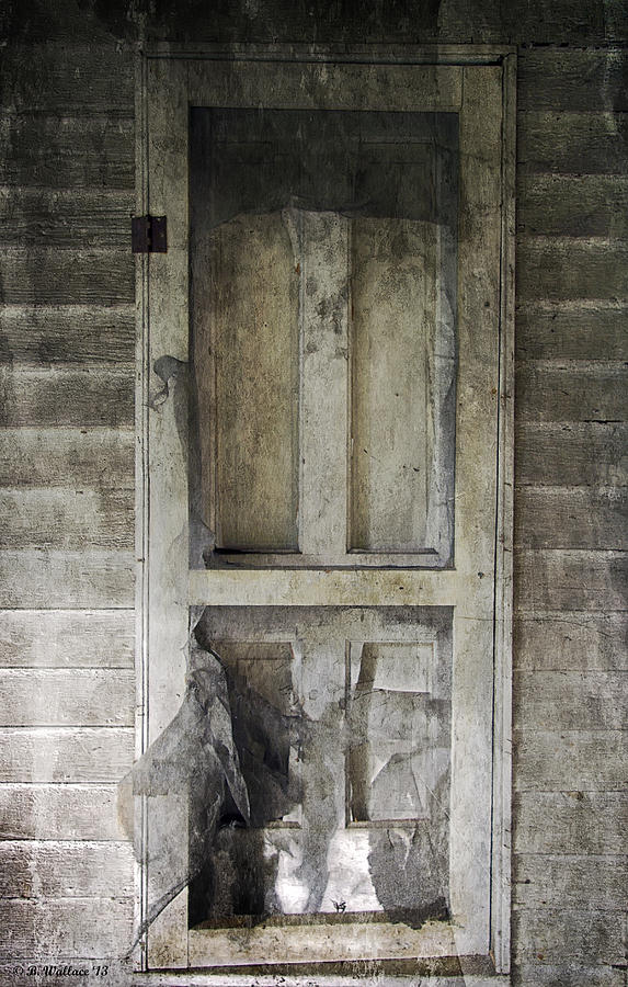 2d Photograph - The Old Lowman Door by Brian Wallace