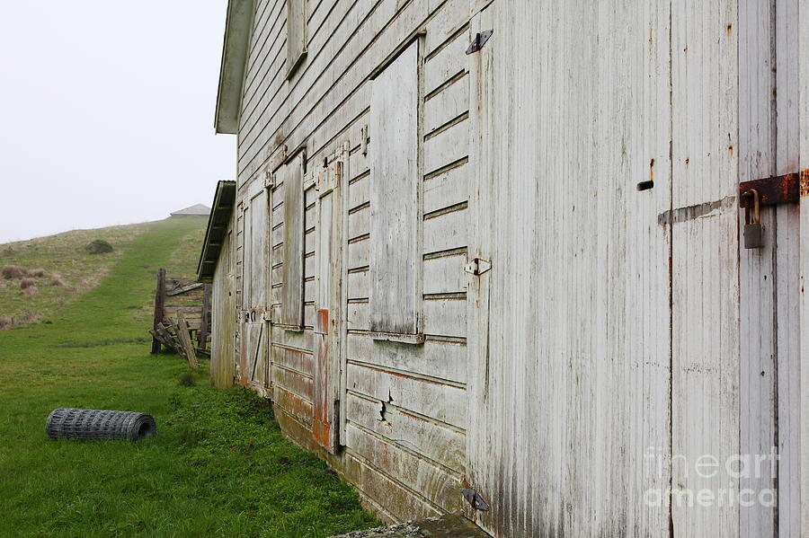 Point Reyes Photograph - The Old Pierce Point Ranch At Foggy Point Reyes California 5d28130 by Wingsdomain Art and Photography
