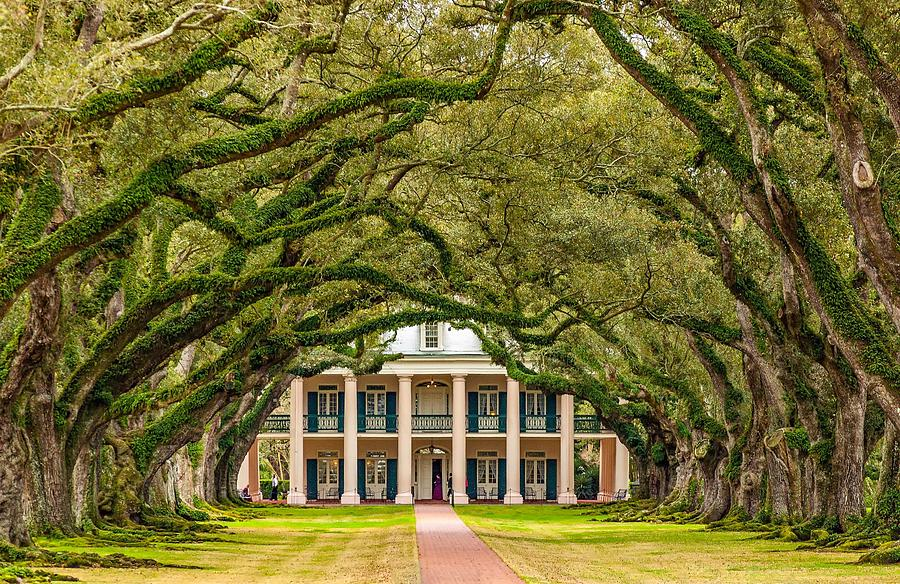 Oak Alley Plantation Photograph - The Old South Version 2 by Steve Harrington