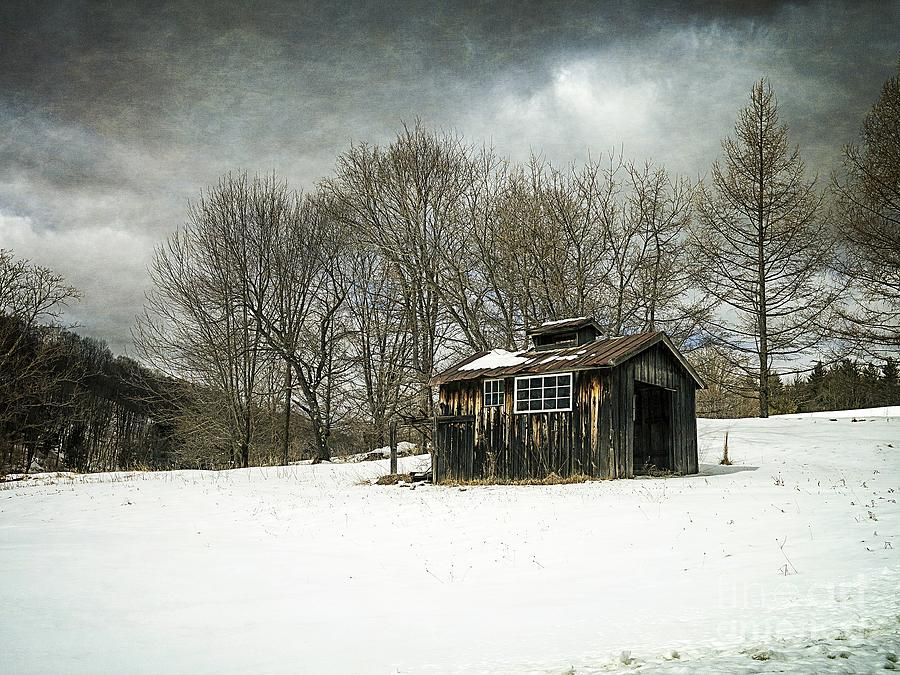 Collection Photograph - The Old Sugar Shack by Edward Fielding