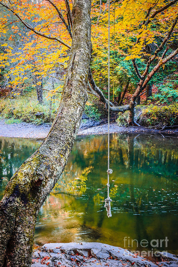 Swimming Photograph - The Old Swimming Hole by Edward Fielding