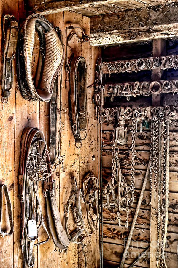 Tack Photograph - The Old Tack Room by Olivier Le Queinec