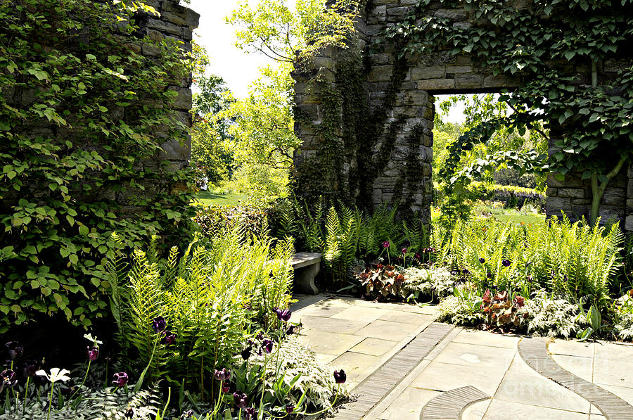 outdoor photograph the outdoor room by addie hocynec - The Outdoor Room