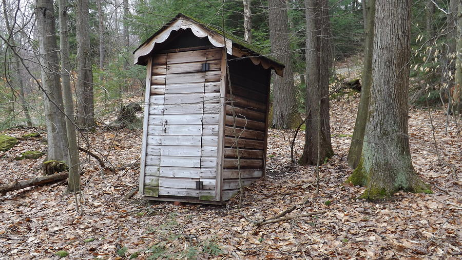 Woods Photograph - The Outhouse by Michael Sokalski