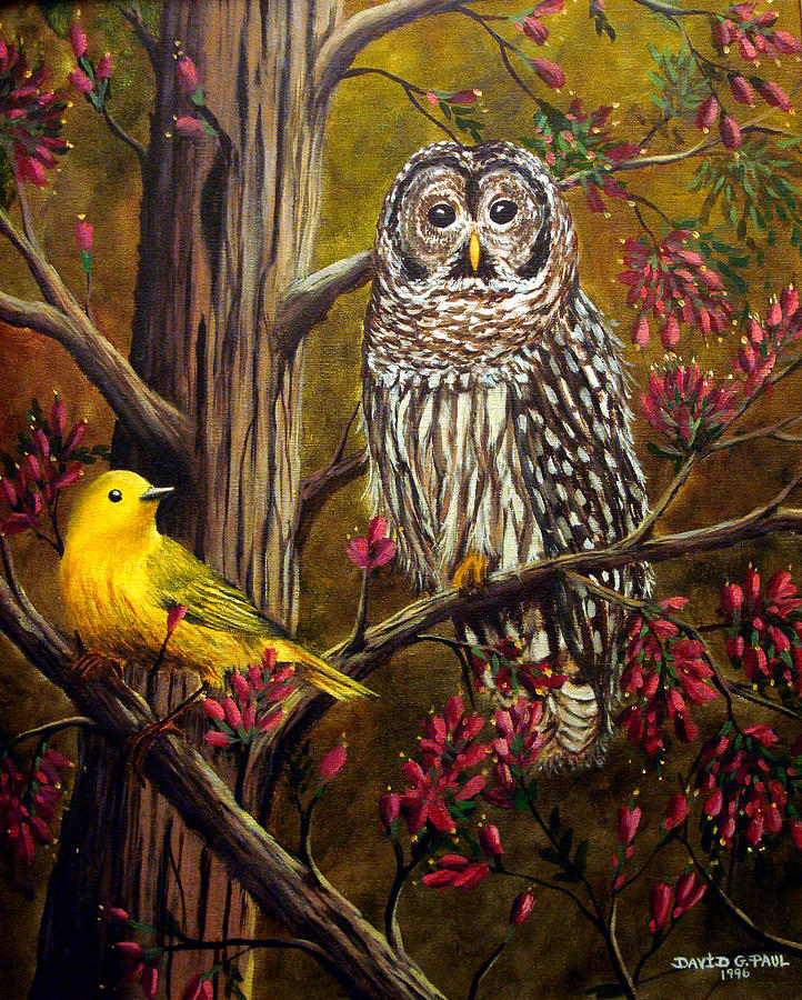 Bird Painting - The Owl and the Canary by David G Paul