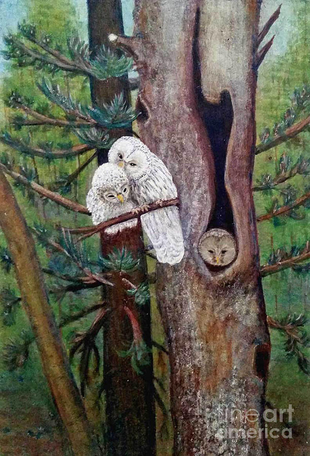 The Owl Family by Patricia  Tierney