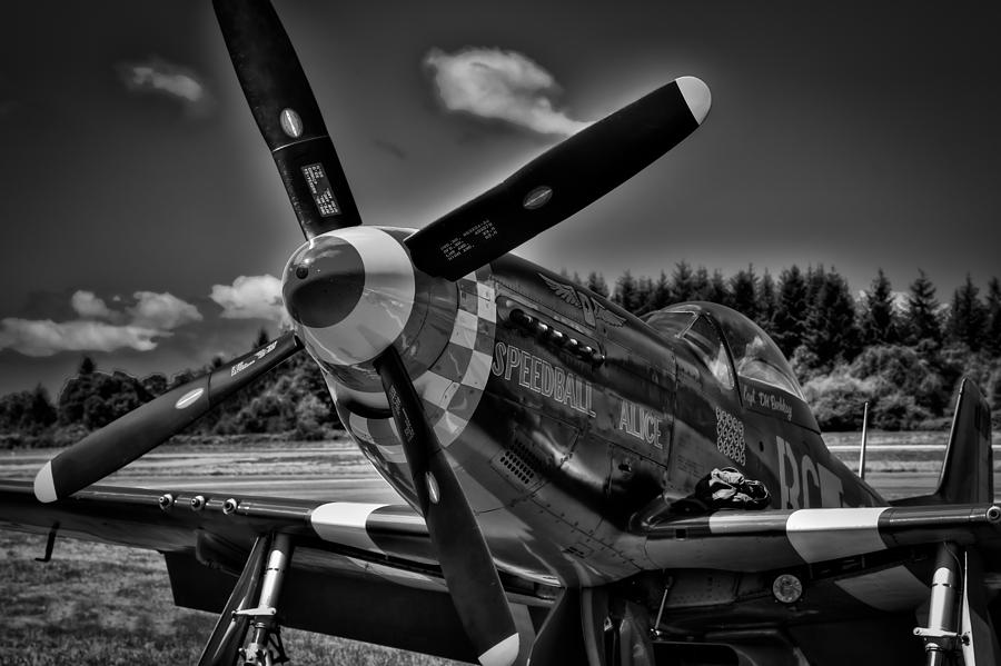 P-51 Photograph - The P-51 Speedball Alice Mustang by David Patterson