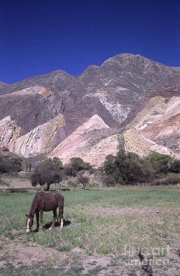 Argentina Photograph - The Painters Palette Jujuy Argentina by James Brunker