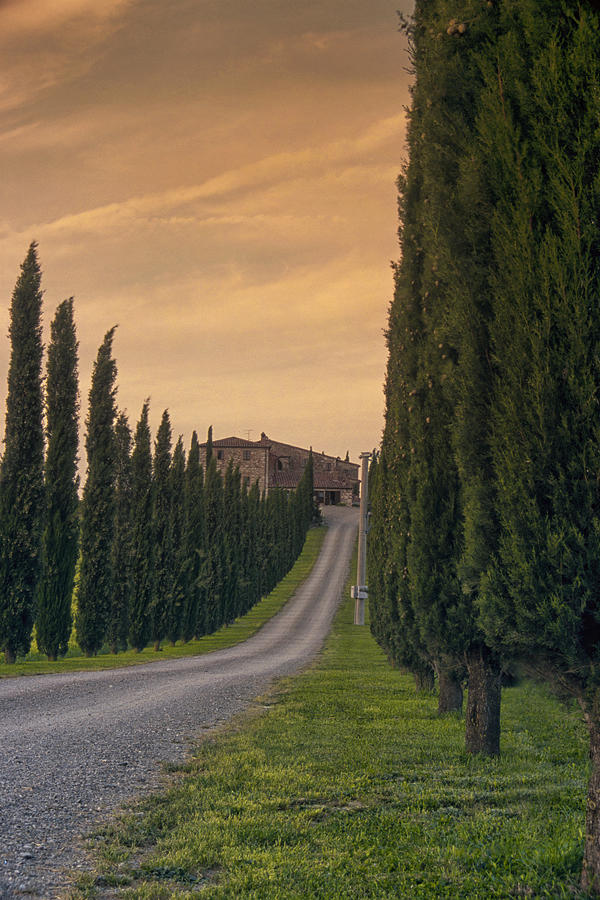 Italy Photograph - The Path Home by Andrew Soundarajan