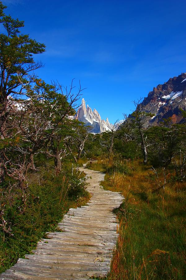 Patagonia Photograph - The Path To Mountains by FireFlux Studios