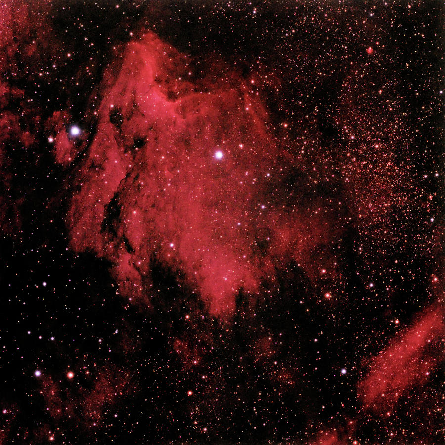 Scenic Photograph - The Pelican Nebula In Cygnus by A. V. Ley