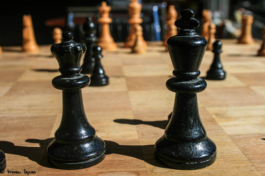 Pawns Photograph - The Perfect Couple by Steven  Taylor