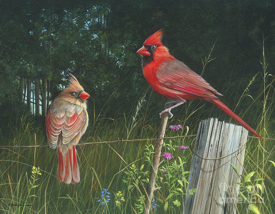 Cardinals Painting - The Perfect Match by Mike Brown