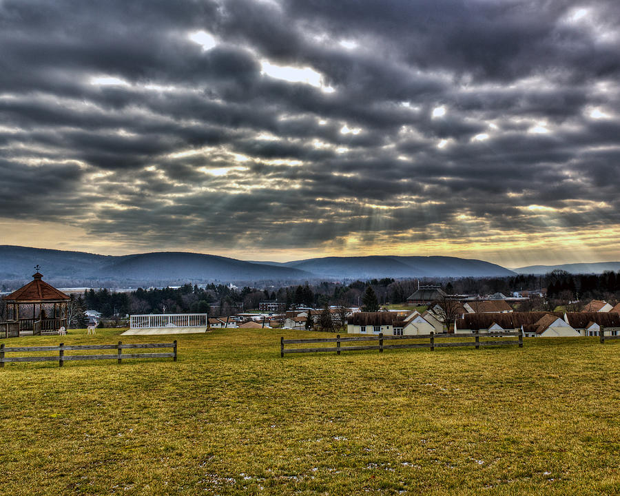 Horseheads Photograph - The Perfect View by Tim Buisman