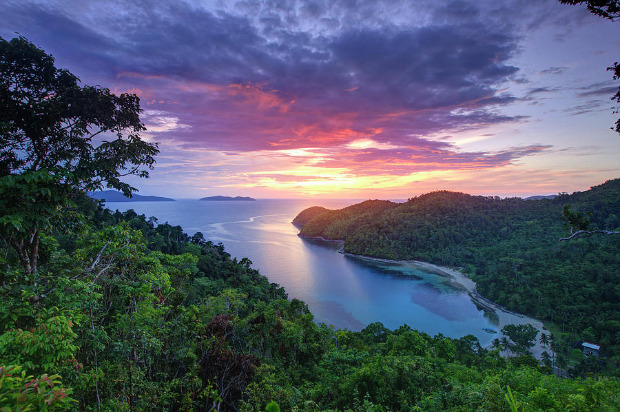 The Philippines, Palawan, Turtle Bay Photograph by Michele Falzone