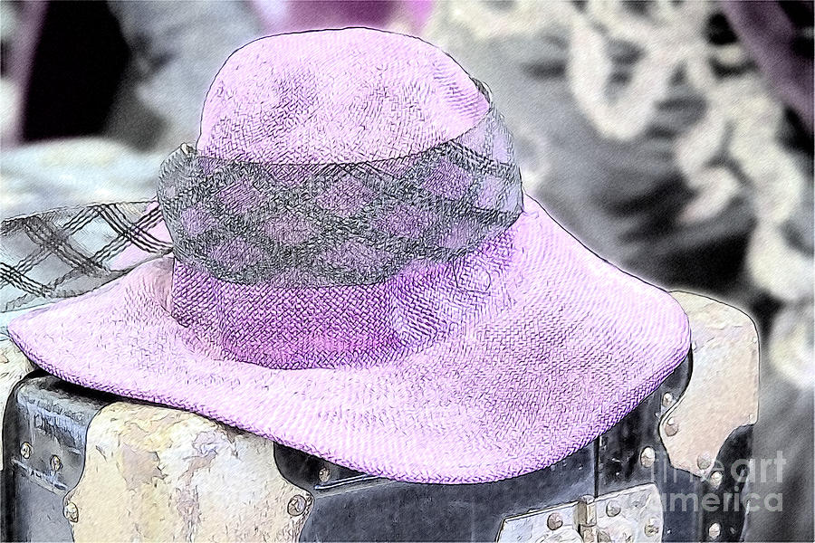 The Pink Ladys Hat Photograph