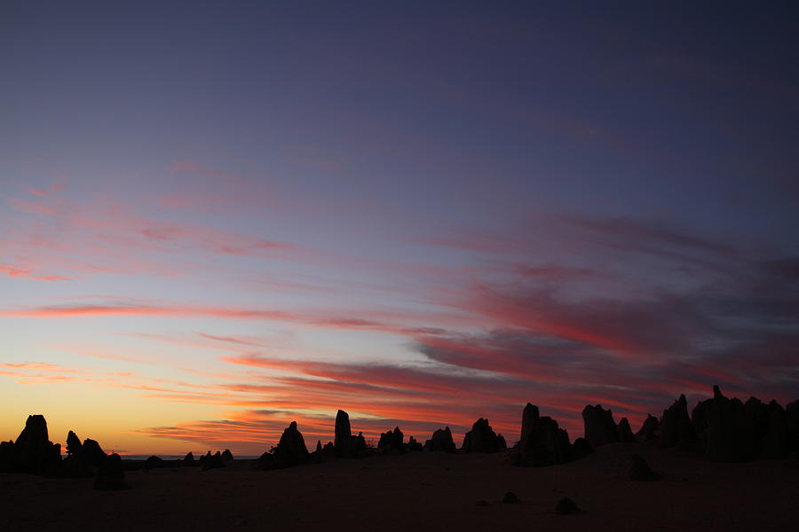 The Pinnacles Photograph - The Pinnacles 2am-29302 by Andrew McInnes