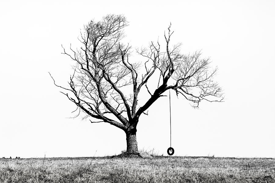 Tree Photograph - The Playmate - Old Tree And Tire Swing On An Open Field by Gary Heller