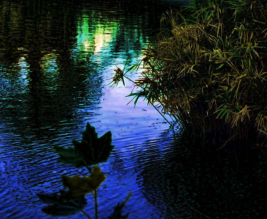 Pond Photograph - The Pond At Dusk by Jo Ann