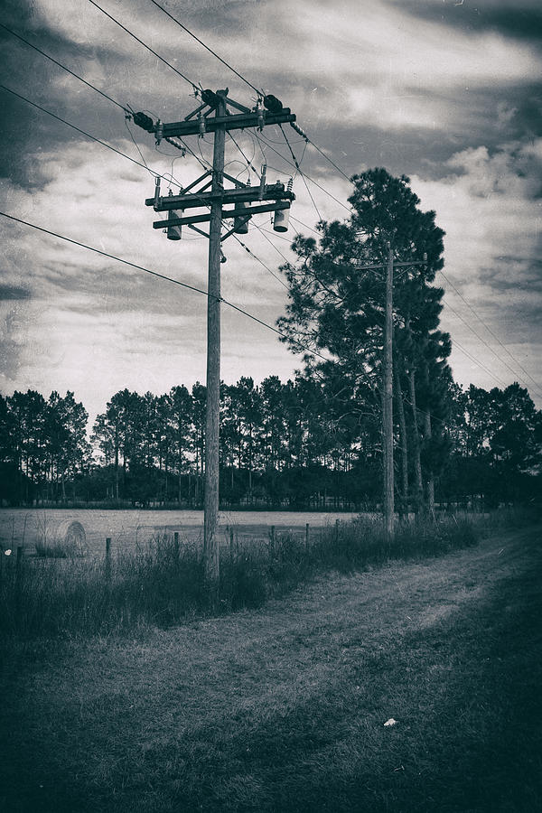Nature Photograph - The Power Lines  by Howard Salmon