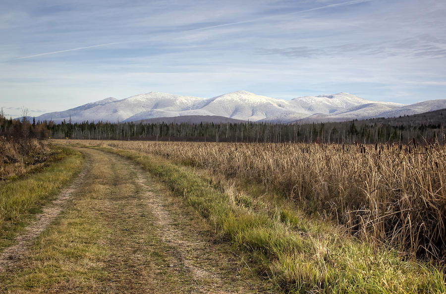 Mountains Photograph - The Presidentials by Diana Nault