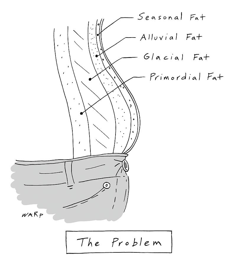 The Problem -- A Diagram Of Various Layers Of Fat Drawing by Kim Warp