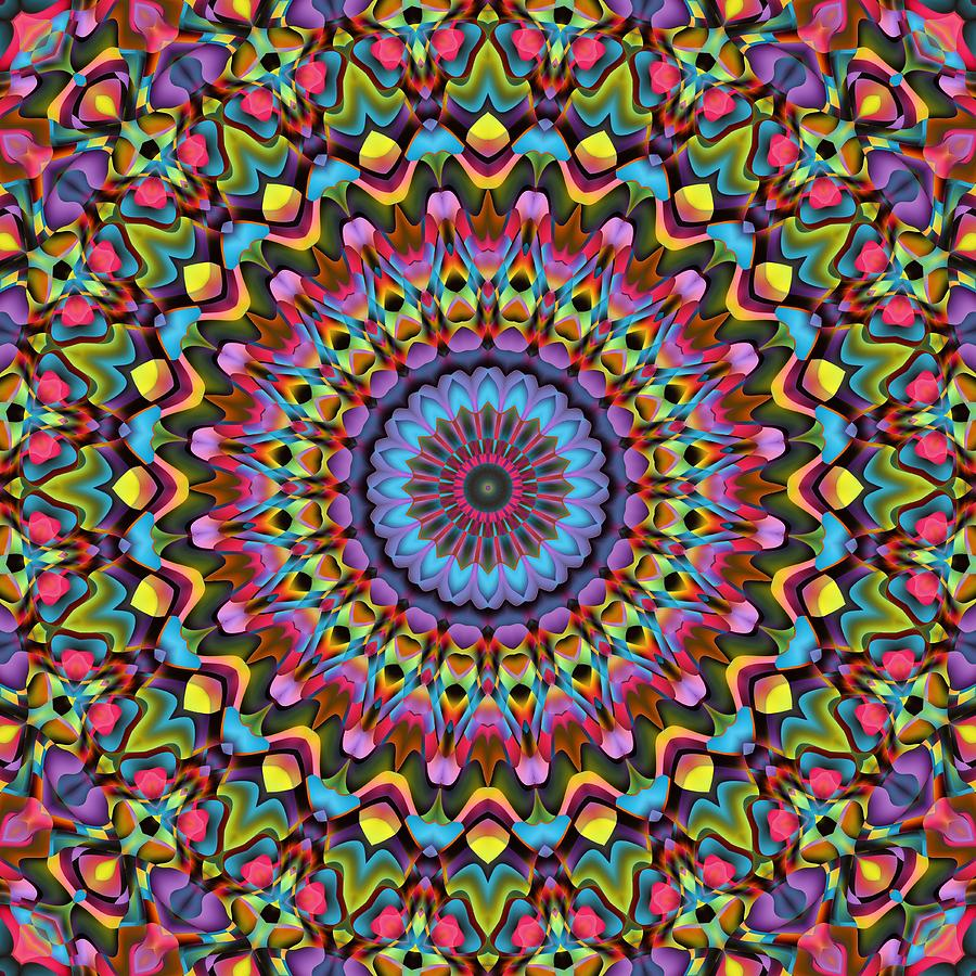 The Psychedelic Days Digital Art By Lyle Hatch