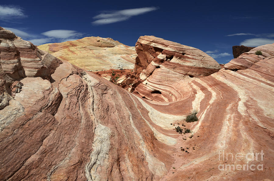 Valley Of Fire Photograph - The Purple Wave 2 by Bob Christopher