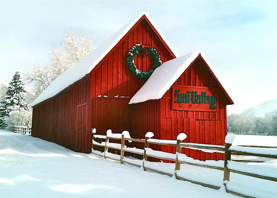 The Red Barn In Sun Valley Photograph By Amy G Taylor