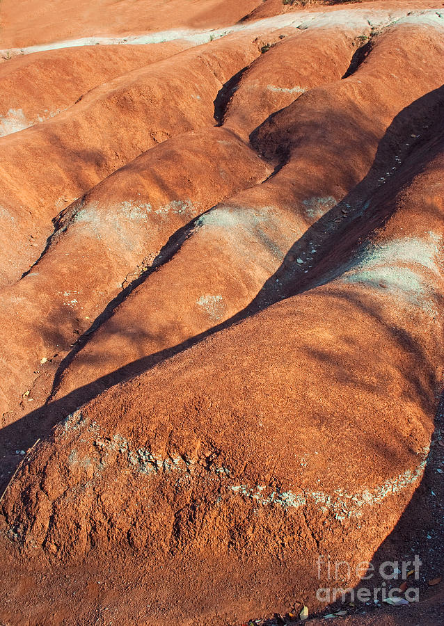 Landscape Photograph - The Red Planet by Barbara McMahon