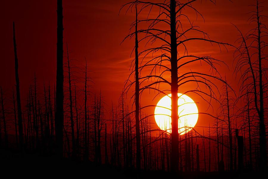 Buffalo Creek Fire Photograph; Buffalo Creek Fire Canvas Print; Red Sun Photograph Photograph - The Red Planet by Jim Garrison