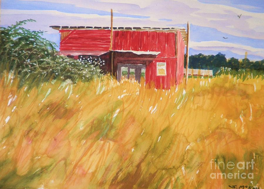 The Red Shed by Suzanne McKay