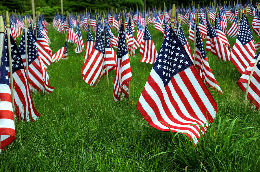 Flag Photograph - The Red White And Blue  American Flags by Donna Doherty